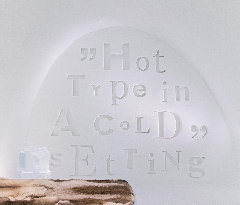 Type in snow